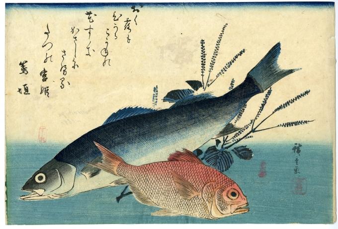 広重「魚づくし すずき・金目鯛にしそ」