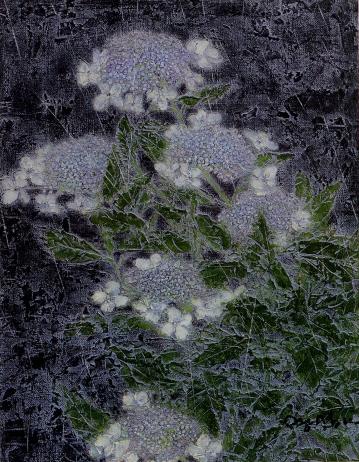 大藪雅孝「萼紫陽花」