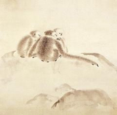 猿猴(部分)