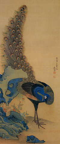 円山応挙「孔雀図」