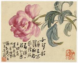 花卉図(1753)